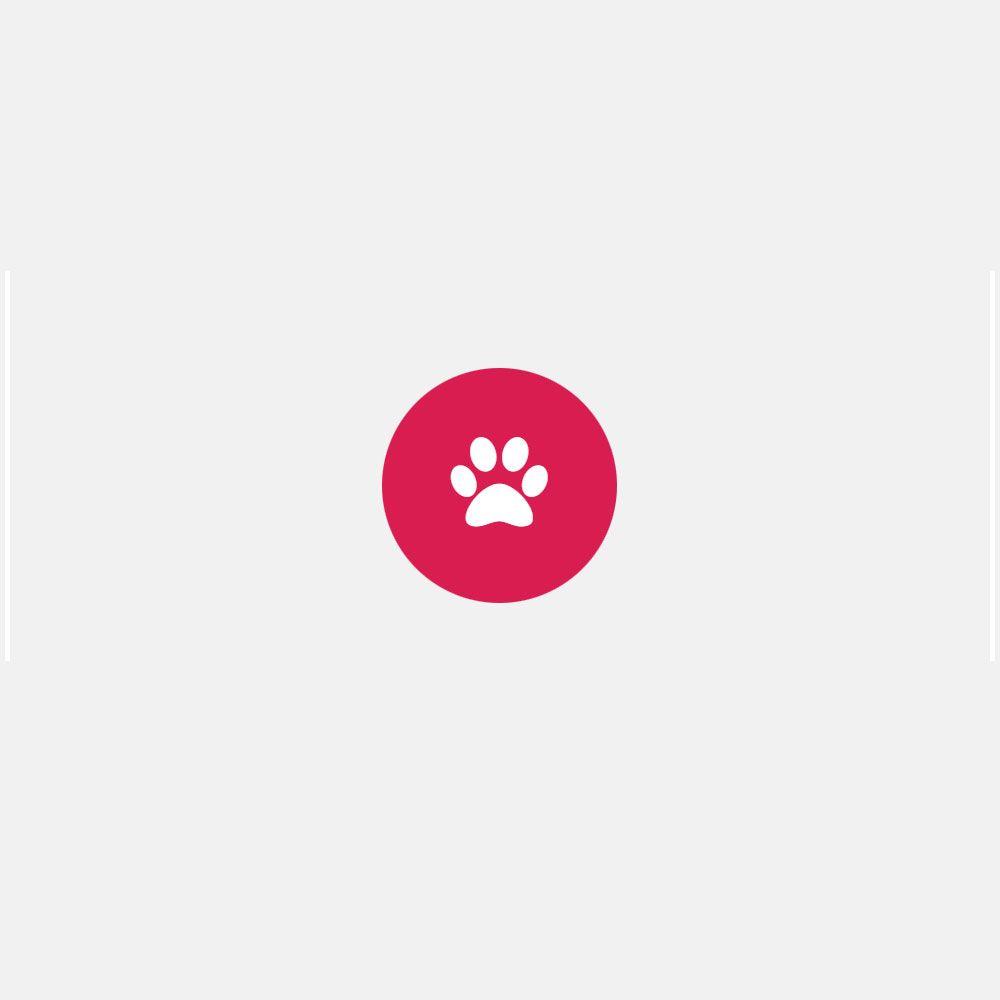 Шлейка для собаки-поводыря