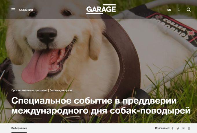 Мы рады собакам-поводырям