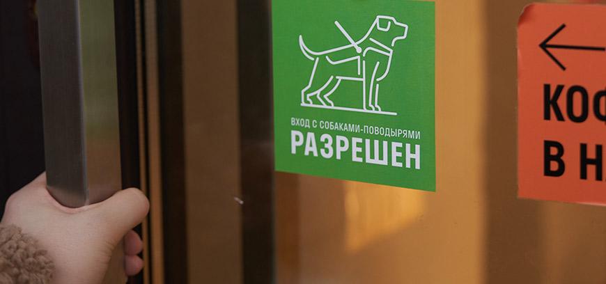 сеть кофеен Cofix стала Guide Dog Friendly