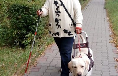 Собака-проводник с хозяином