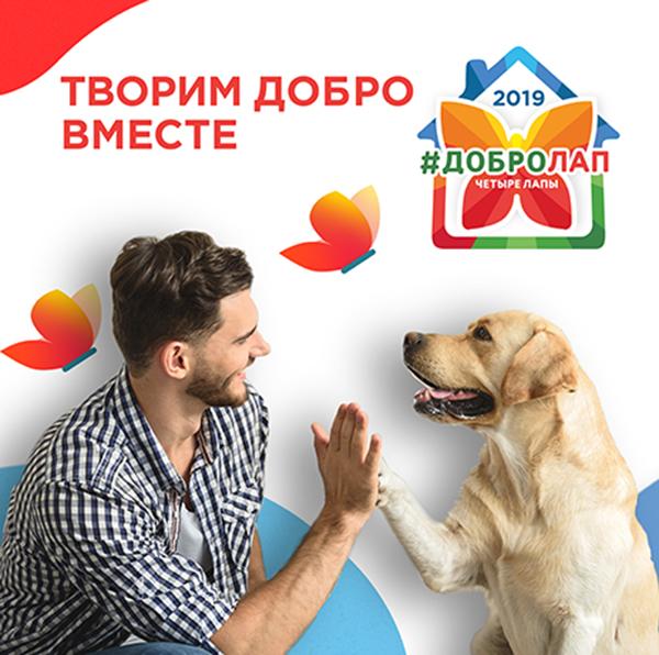 Добролап и собаки поводыри