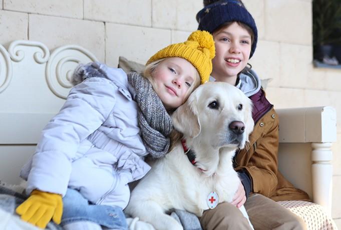 Собаки-терапевты для детей с особенностями развития