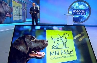 Мы рады собакам-поводырям в Манеже