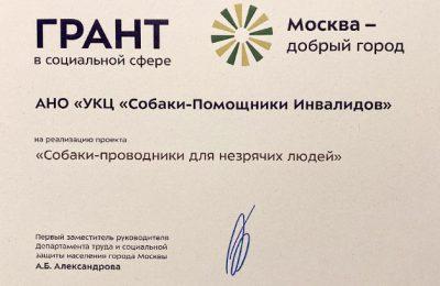 «Москва — добрый город»: итоги реализации проекта