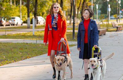 Международный день собак-поводырей