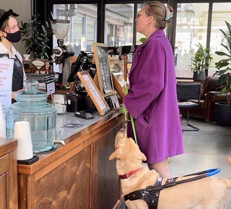 В бизнес-парке Казакова рады собакам-поводырям
