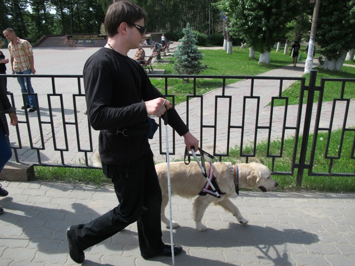 Собака-поводырь Сэм