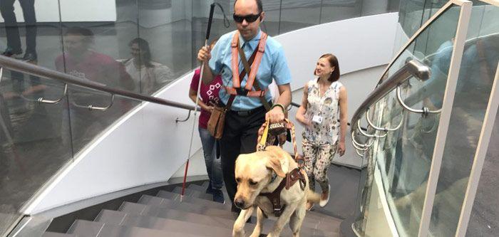 В Ельцин-Центре рады собакам-поводырям